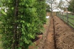 Bucks Instant Hedge